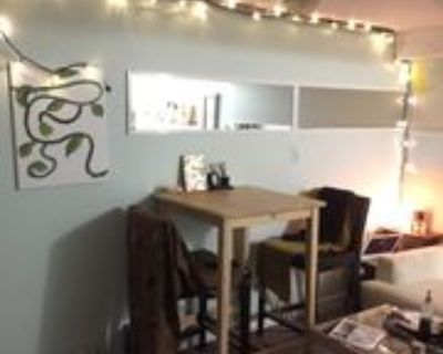 1025 Dufferin Street #Basement, Toronto, ON M6H 4B5 1 Bedroom Apartment