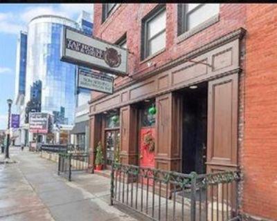 85 West Chippewa Street - 4 #4, Buffalo, NY 14202 Studio Apartment