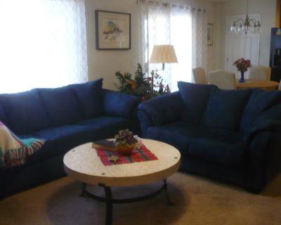 Navy blue sofa and loveseat new set