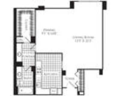 Willard Towers - Studio, 1 Bath 772 SF S1