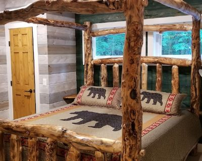 Storybook Caretaker's Cabin in the Woods -Clemson - Central
