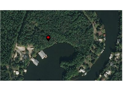 Water Front Lots 38 and 39 on Fish River