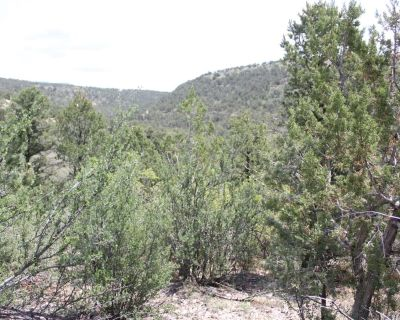 3.1 Acres for Sale in Cloudcroft, NM