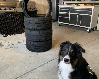Ohio - 2019 Type R stock tires