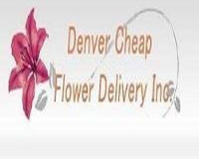 Same Day Flower Delivery Denver CO - Send Flowers