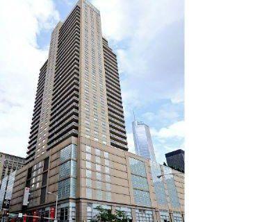 N. State St Illinios, United States 60610 2 Bedroom Apartment Rental
