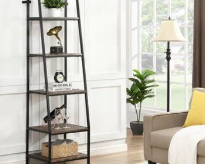 Design ladder bookcase