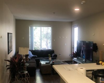 Pet Friendly Sublet in the Heart of Silicon Beach