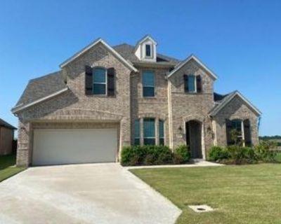 11329 Bull Head Ln, Roanoke, TX 76262 5 Bedroom Apartment