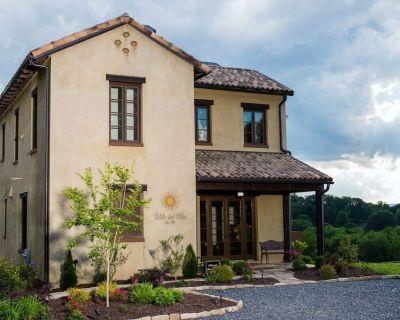 Villa del Sole, Luxurious Tuscan Inspired Villa In Montaluce Winery & Estates - Dahlonega