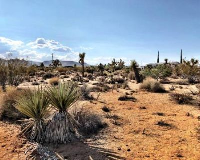5 Acres Land in Joshua Tree with Shasta trailer, Airstream and Cabin, yucca valley, CA