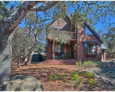 Poppy Cottage in the Pines Pet Friendly !!!!! - Lodge Hill