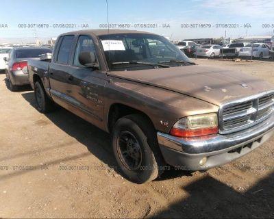 Salvage Brown 2000 Dodge Dakota