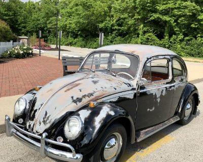 1964 Beetle solid AZ car in IN