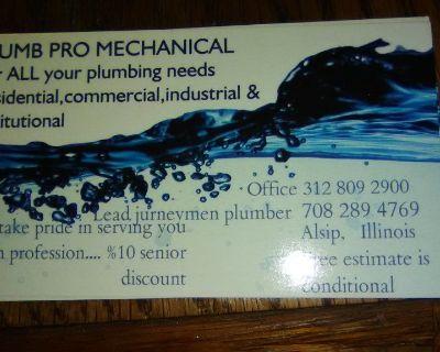 Licensed plumbing pros