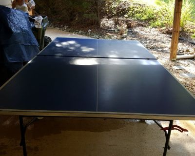 Indoor/Outdoor Ping Pong table