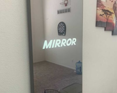 The Mirror Home Fitness System