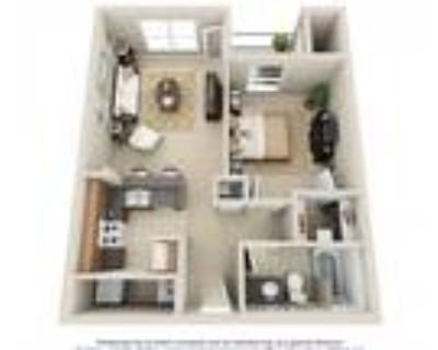 City Place at Westport - One Bedroom A1