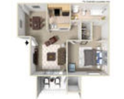 Wyoming Place Apartments - 1 Bed - B