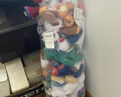 Bag of State Beanie Babies