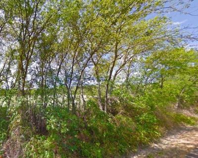 Great investment! Vacant Land for Sale - 38055 Brookside Dr Whitney TX 76692