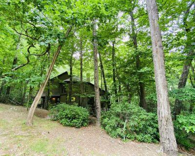 New Rental Cozy Creek Cabin Big Canoe, GA Sleeps 6 - Big Canoe
