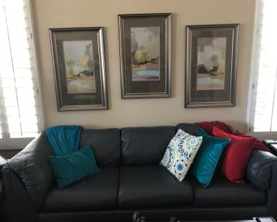 Sofa and love sear