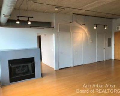 315 2nd St, Ann Arbor, MI 48103 1 Bedroom Condo
