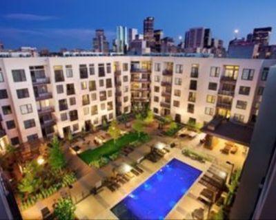 2445 Broadway #201, Denver, CO 80210 1 Bedroom Apartment