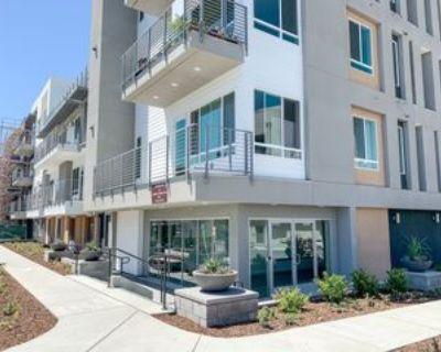 263 Llano De Los Robles Ave, San Jose, CA 95136 3 Bedroom Condo