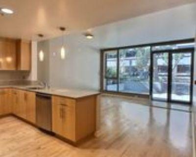 38 N Almaden Blvd #105, San Jose, CA 95110 1 Bedroom House