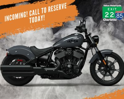 2022 Indian Motorcycle Chief Dark Horse Stealth Gray