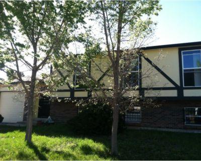 3 Bedroom 2 bath Bi-level home with 1 car garage near Green Valley Ranch!