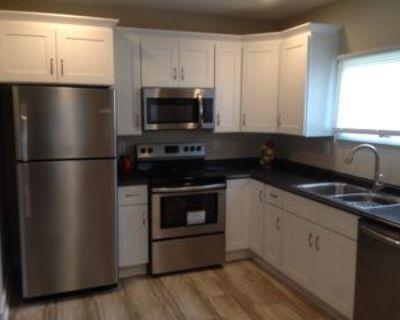 1613 Fletcher Avenue, Indianapolis, IN 46203 2 Bedroom House