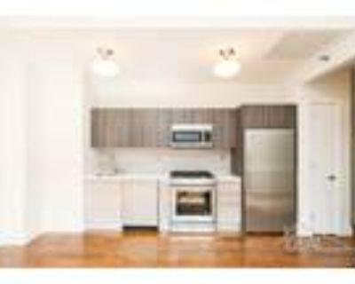 1 Bedroom 1 Bath In Brooklyn NY 11201