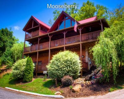 EVERYONE WANTS THIS CABIN--BOOK MOOSEBERRY TODAY FOR FALL & WINTER - Pigeon Forge