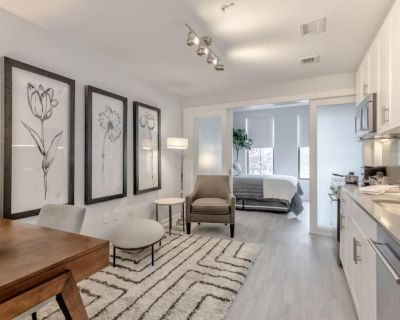The Rushmore unit 120, Jr 1BR, (31 night min stay) - Eastern Market