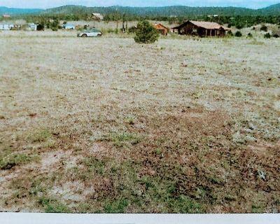 Alpine Village Property Filing #5