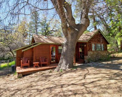 Rustic cabin in the woods w/ private hot tub & convenient location - dogs ok! - Idyllwild