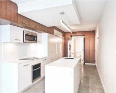 245 East Georgia St #603, Vancouver, BC V6A None Studio Apartment