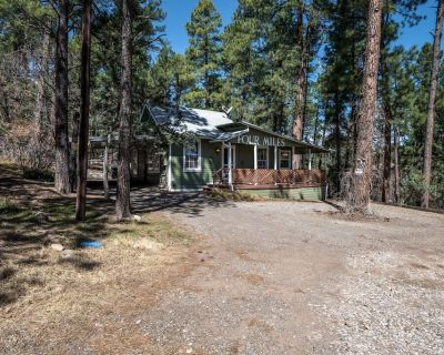 Quaint, cozy cabin in the woods Four Miles is worth a visit! - Ruidoso