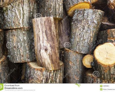 LARGE WOOD LOGS/STUMPS, DRIED FLORAL & CHILI WREATHS, & PINE CONES FOR SALE