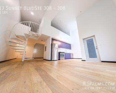Massive top floor loft w/spiral stairs, Quartz, Stainless Kitchen & Central Air!