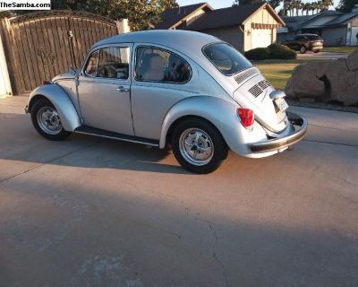 2003 Mexican Beetle