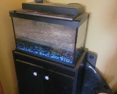 Good condition glass fish aquarium with stand