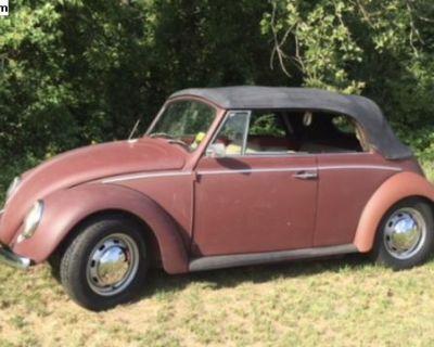 1968 Convertible Beetle