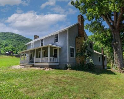 Natural Remedy Private Location, Gas Grill, Patio & Sweeping Mountain Views - Asheville