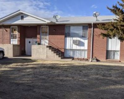 115 South 18th Avenue - 1Apt #1, Brighton, CO 80601 2 Bedroom Apartment