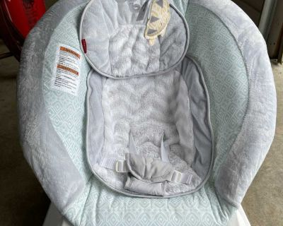 Fisher-Price Bouncer Seat with Removable Arm