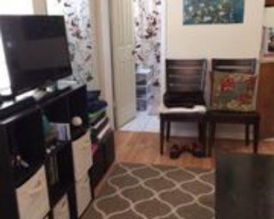1036 State St Nw #A, Atlanta, GA 30318 Studio Apartment